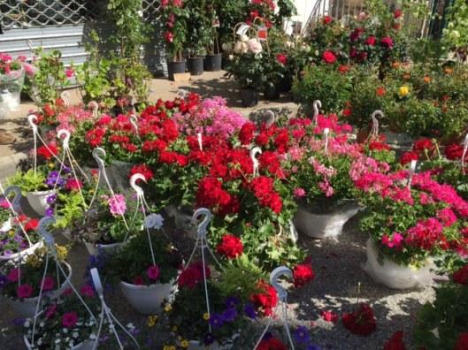 bloemen op de lentemarkt
