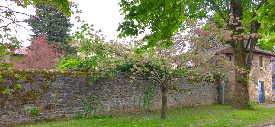 Wonen in de Ardèche