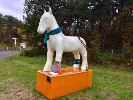 Witte paard in Egmond